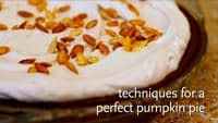 Whole Foods Midwest Holiday Videos 2010 : Pumpkin Pie Techniques